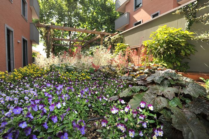 Progetto giardino online il giardino pensile all 39 ombra - Giardino in ombra ...