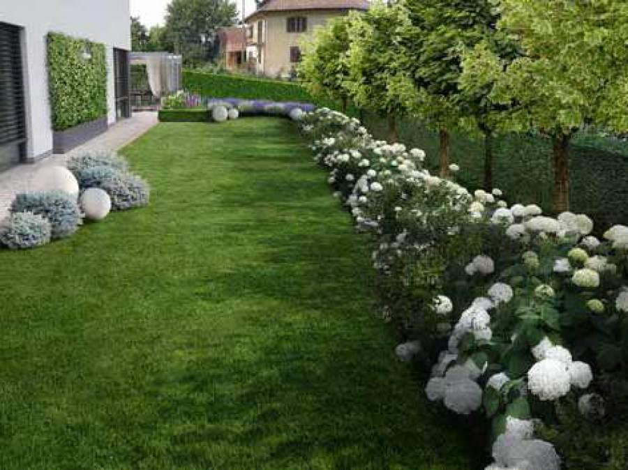 Immagini Di Giardini Moderni : Progetto giardino online galleria progetti giardini